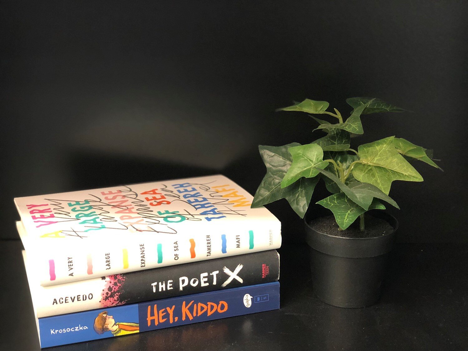 An image of three of our ABG books:  A Very Large Expanse of Sea ,  The Poet X , and  Hey, Kiddo .
