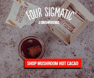 hot_cacao_300x250.jpg