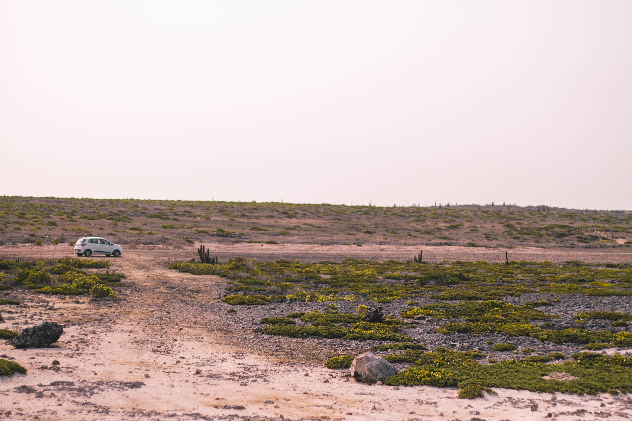 aruba 2019-126.jpg