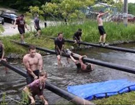 Water Log Crossing