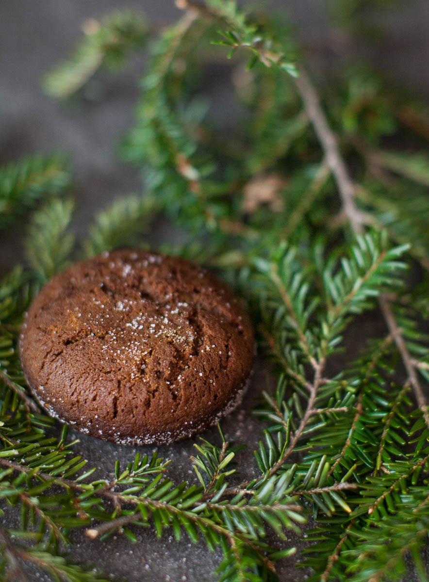 MegaBugPhotography_ChristmasCookies-10.jpg