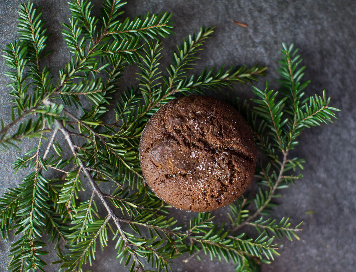 MegaBugPhotography_ChristmasCookies-7.jpg