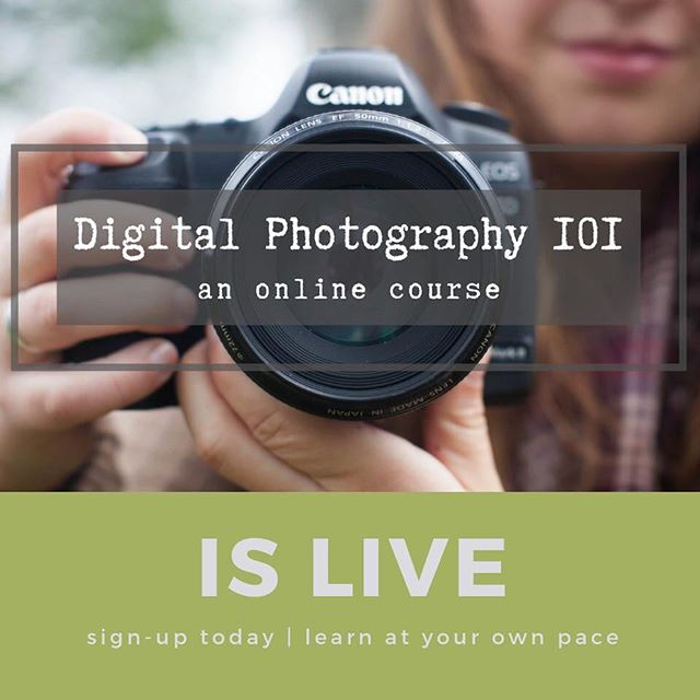 Online Digital Photography 101 is LIVE! . . . Sign-up anytime and learn at your own pace. This course will eliminate any intimidation you may feel about using your camera and answer questions such as… . . . • How do I make my background blurry? • How can I freeze motion? • How do I take indoor photos without the yellow tint? • Which lens should I use? And more! . . . Link in bio. . . . #digitalphotography101 #learnphotography #onlineclass #photographyclass #neverstoplearning