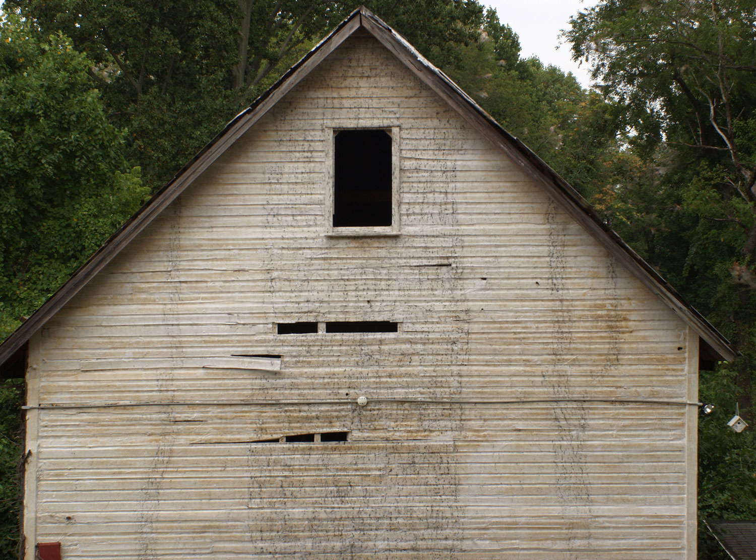 Human Birdhouse,  wooden barn, charcoal, washi, 2008-2009. Site-specific installation at the Schuylkill Center for Environment Education in Pennsylvania, PA, USA  (wall: 26 x 41 feet).