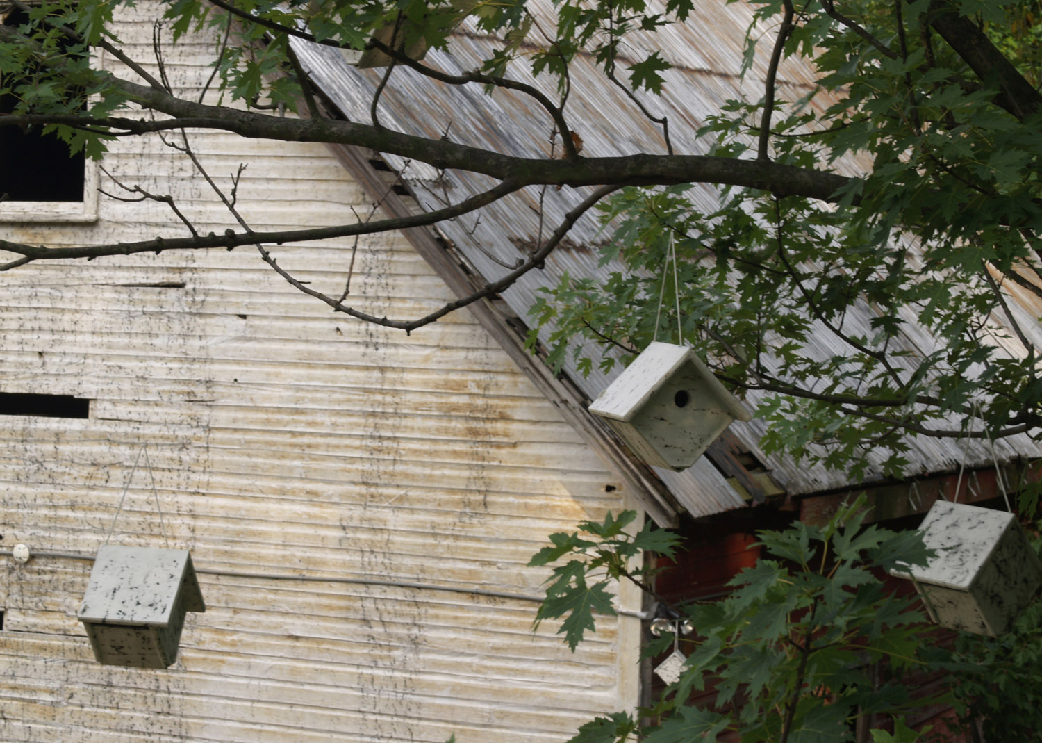 Detail of  Human Birdhouse  installation at the Schuykill Center, Pennsylvania, USA,  September 2008.