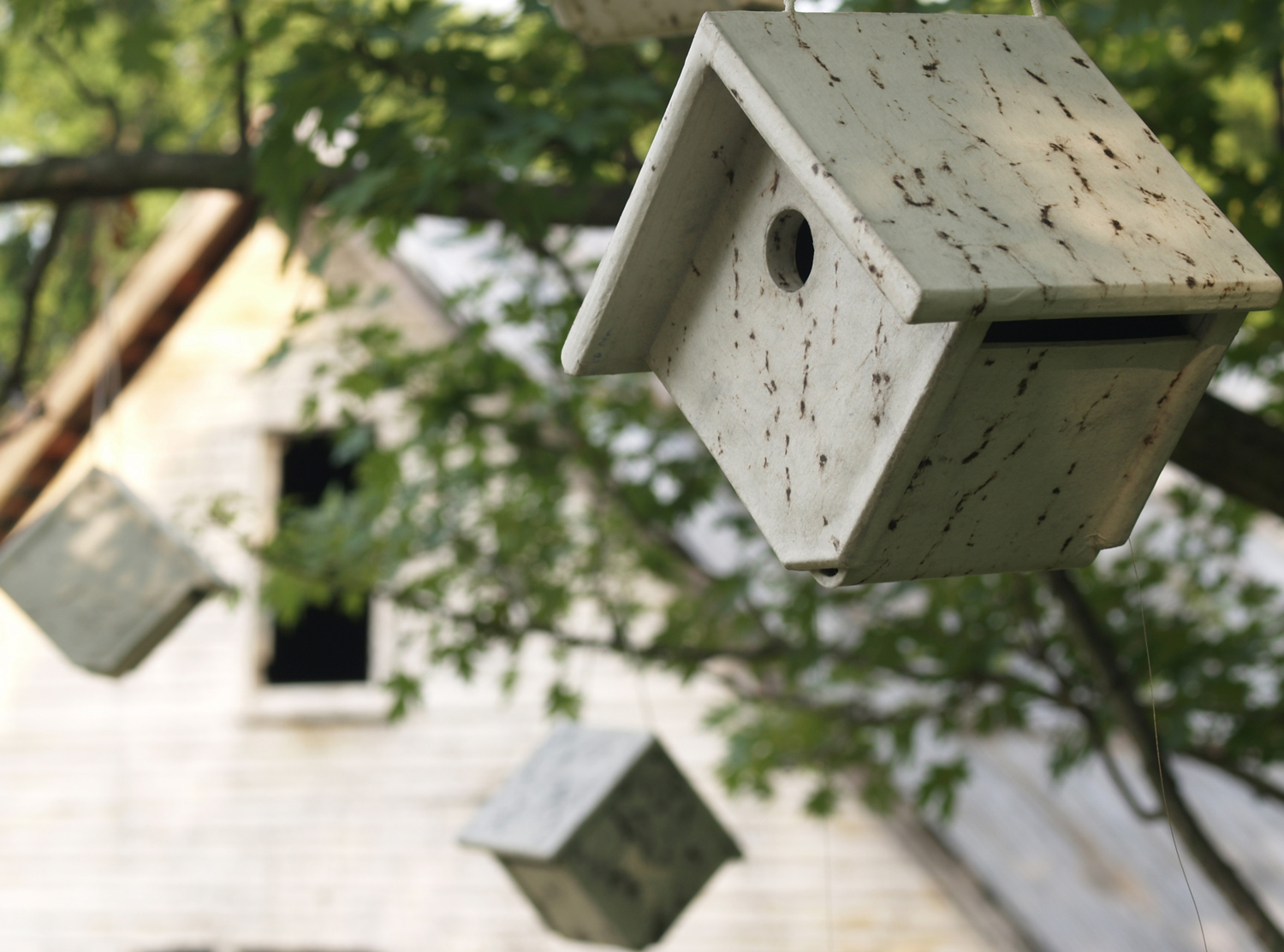 Detail of birdhouse from  Human Birdhouse  at the Schuykill Center, Pennsylvania, USA, September 2008.