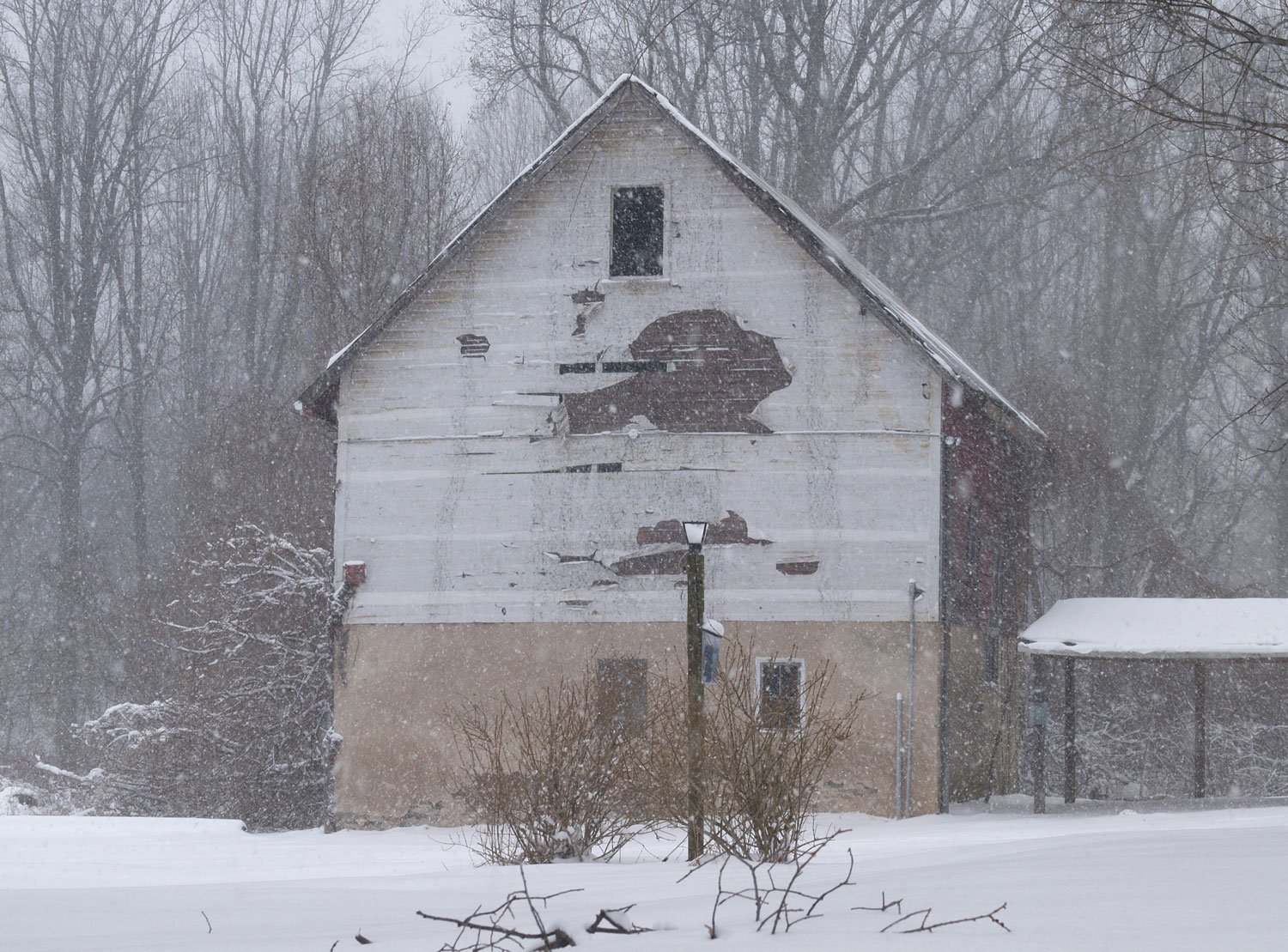 Installation view of  Human Birdhouse  in snow at the Schuykill Center, Pennsylvania, USA, January 2009.