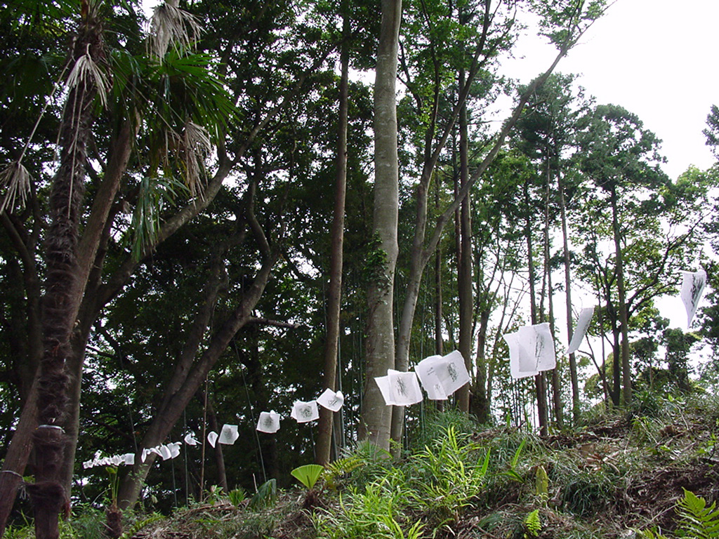 Installation in the forest, Ryugasaki, Japan 2000