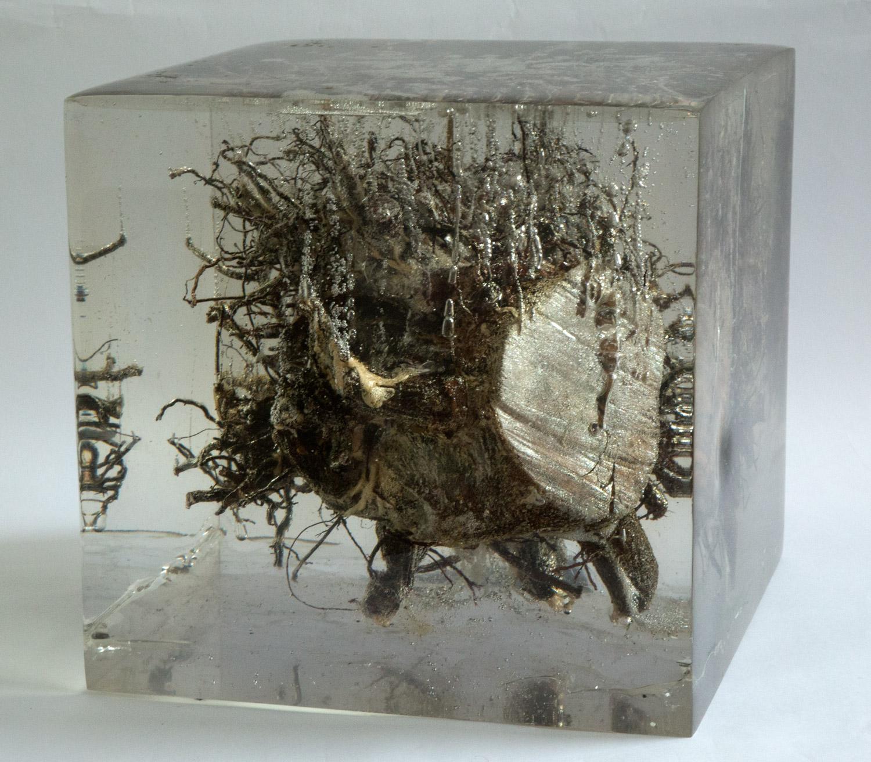 """Cityroot#2     2006  Root, brick, metal. glass, resin  13.75"""" x 13.75"""" x 13.5"""""""