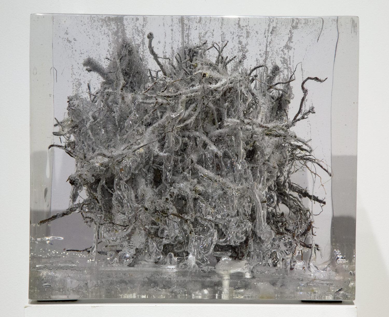 """Cityroot#1     2006  Root, brick, metal. glass, resin  13.75"""" x 13.75"""" x 13"""""""