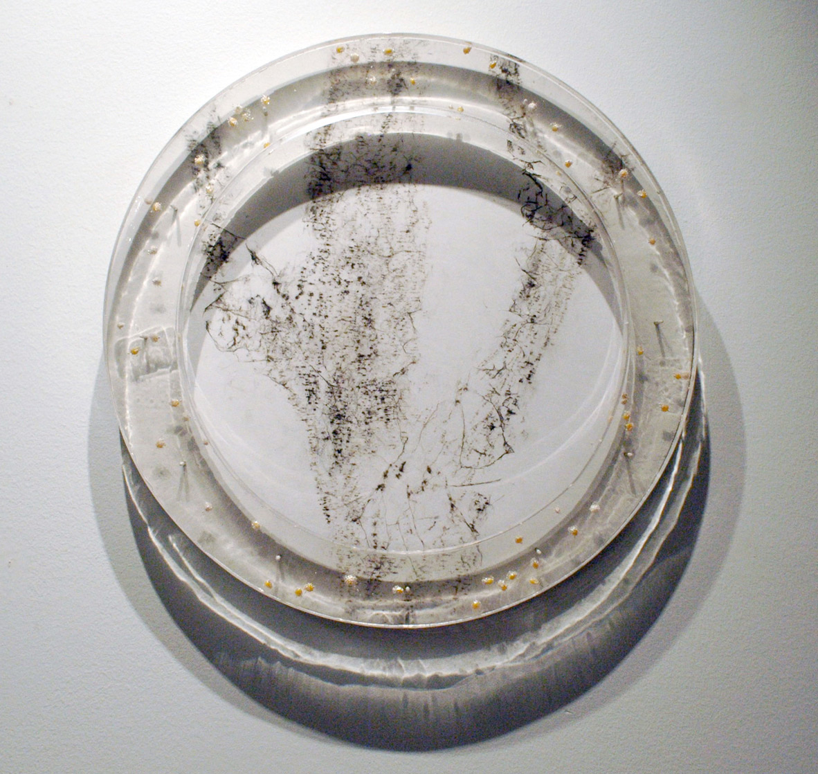 "Tree Rubbing S1 Philadelphia  2009  washi, Charcoal, Japanese rice, Resin, panel  21"" (diameter) x 2"""