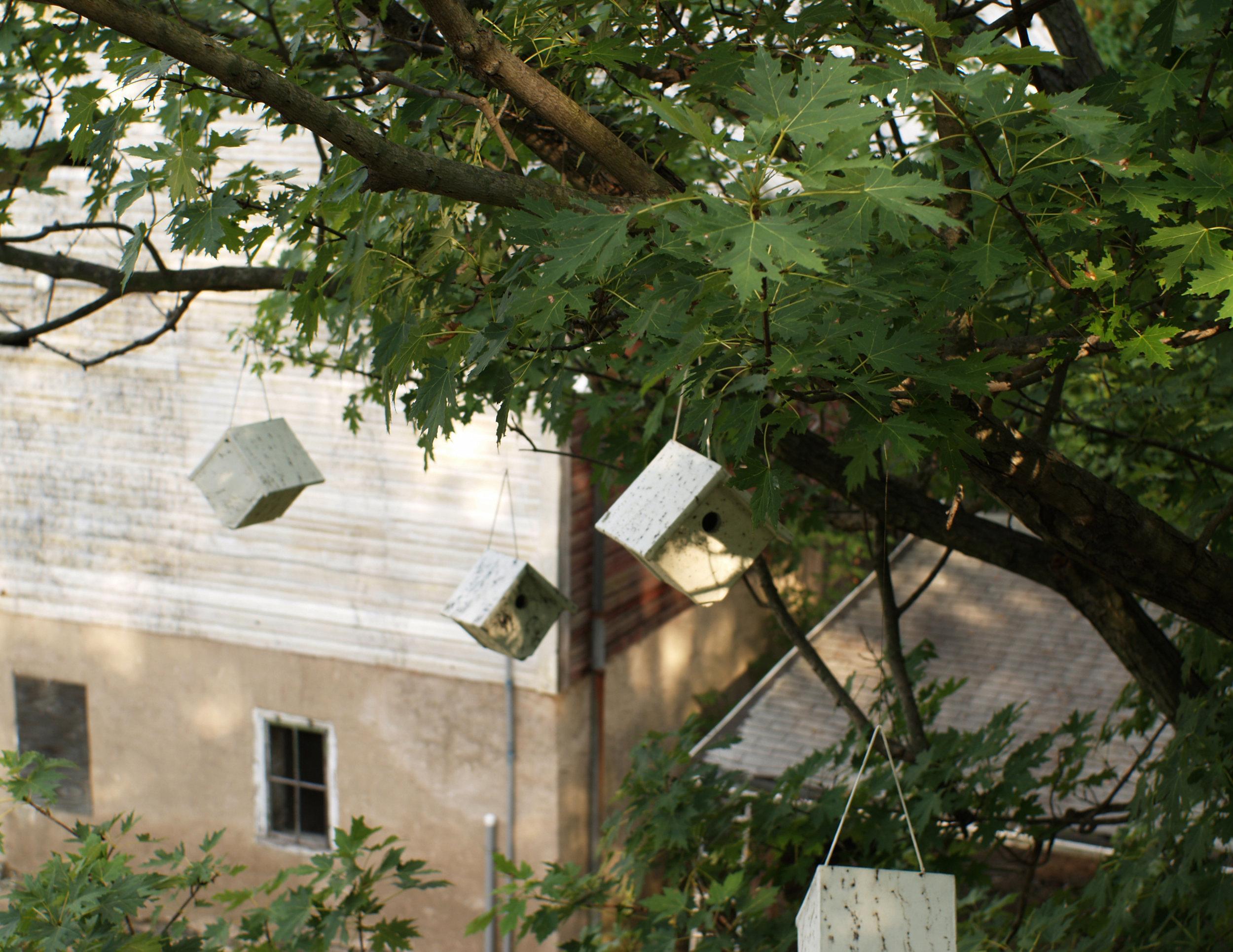 birdhouses5.jpg