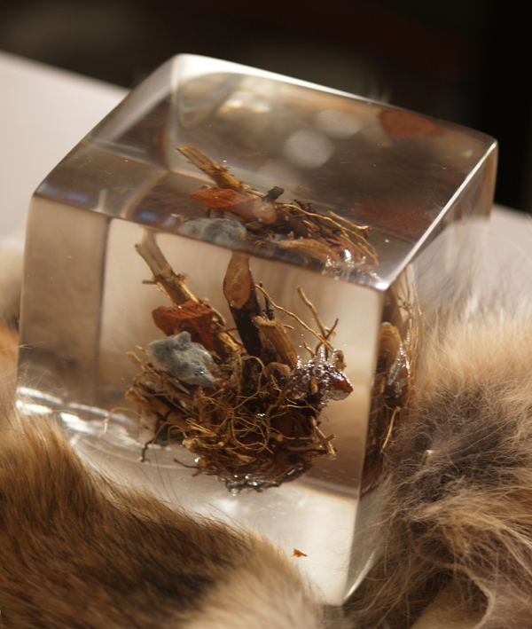 """Experimental 4"""" cube using clay, twigs, and rocks, suspended in resin."""