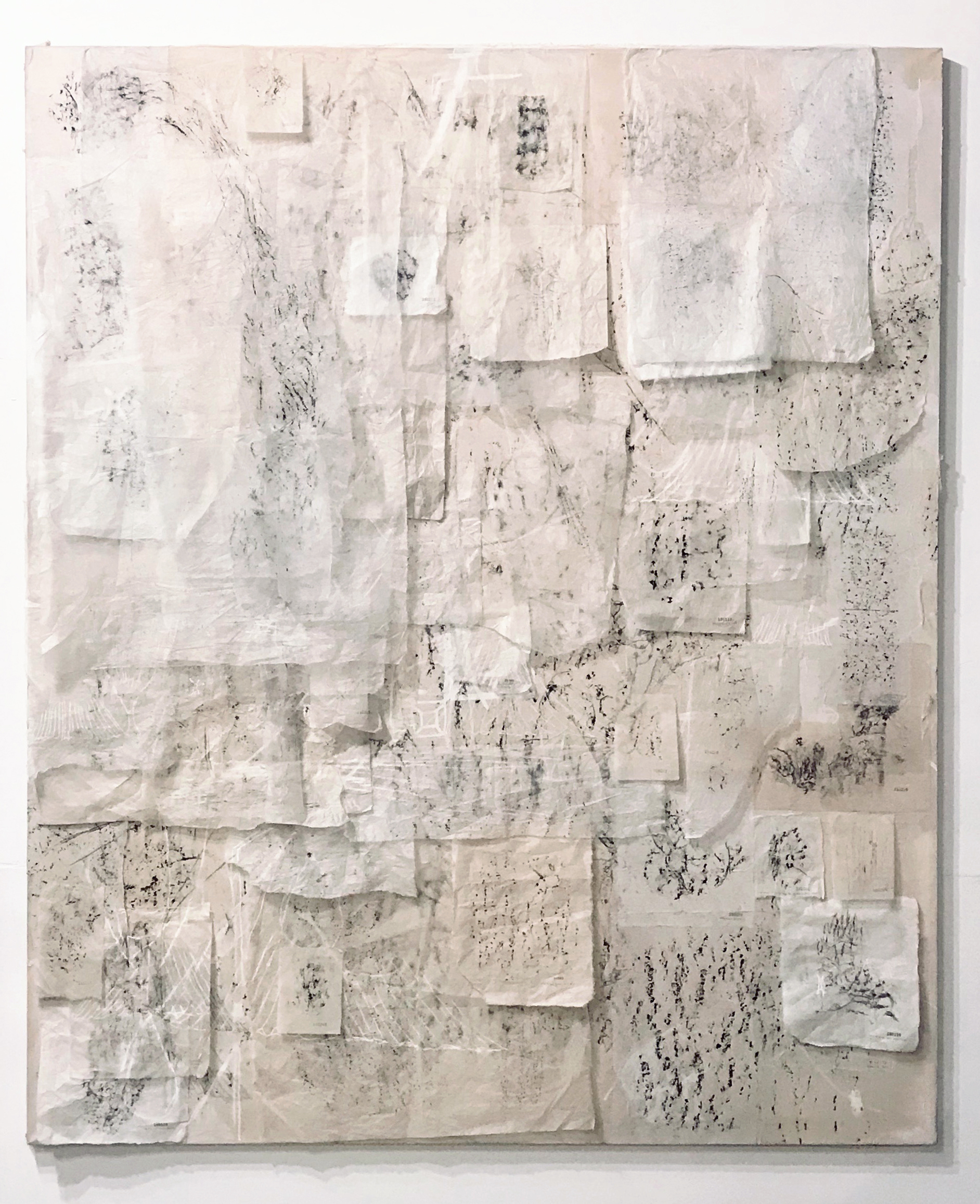 Portrait of Myself, no. 2  Charcoal, washi, chalk, linen 185 x 323 x 5 cm 2019