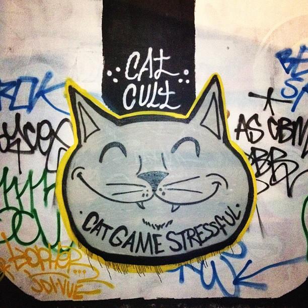 Cat Game Stressful