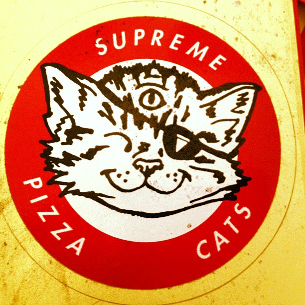 The brotherhood grows stronger everyday. #SupremePizzaCats #BrotherhoodOfThe9Lives #🍕🐈