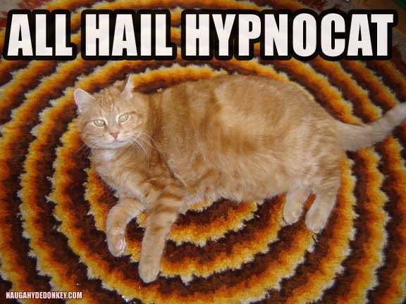 Some memes are just… hypnotic…
