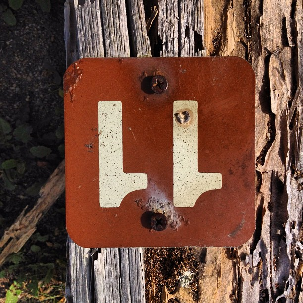 Street treasure #4 (Taken with  Instagram  at Highway 1 - Carmel / Big Sur)