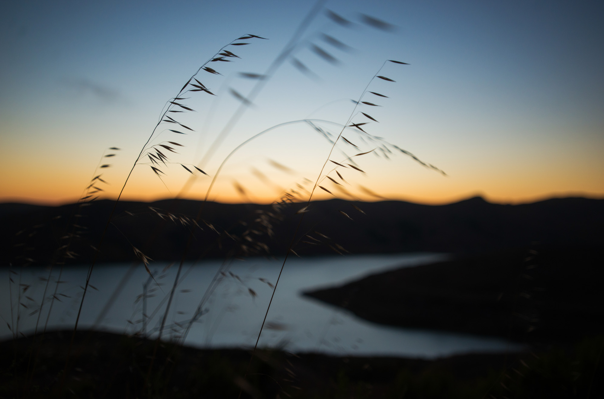 whalerock_reservoir_brittany_app.jpg