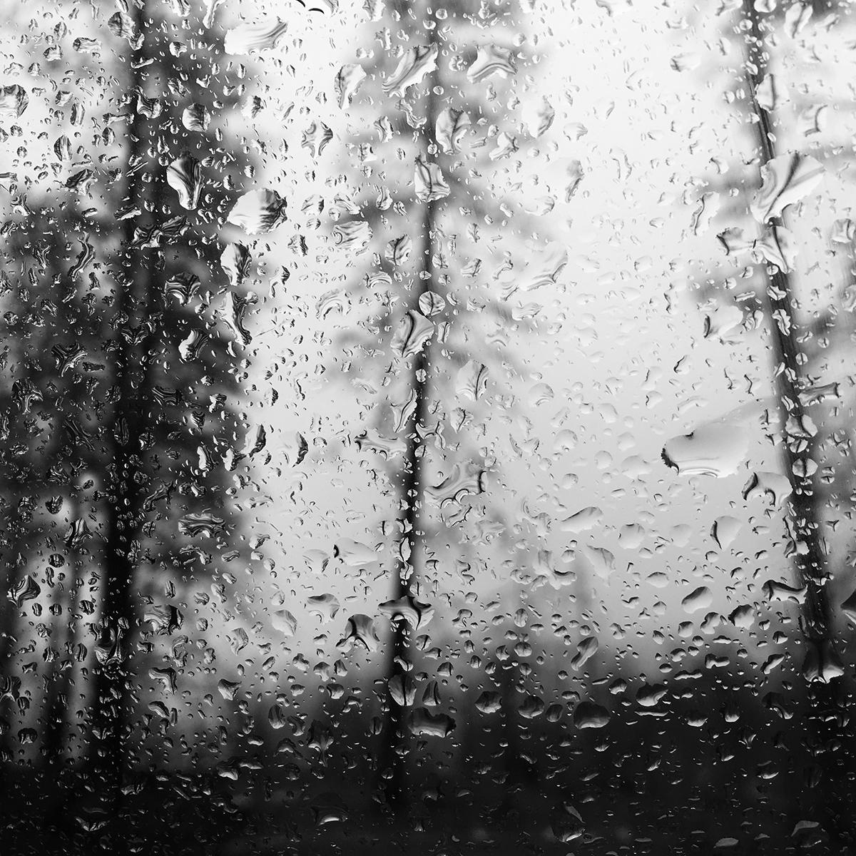16_cobb_rain.jpg