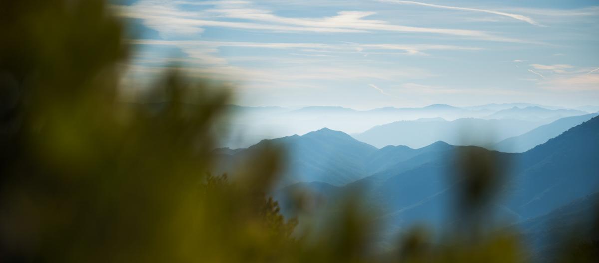 landscape_cerro_alto_crop.jpg