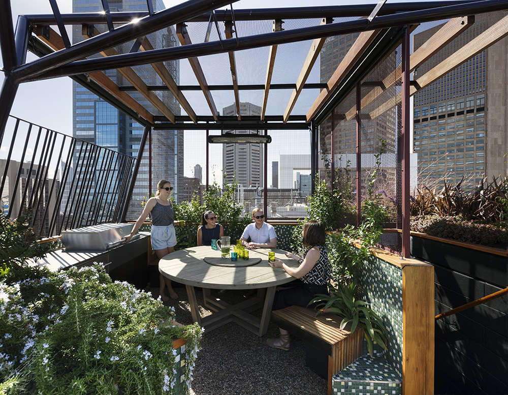 Why We Design Rooftop Gardens Not Just Green Roofs Articles Bent Architecture