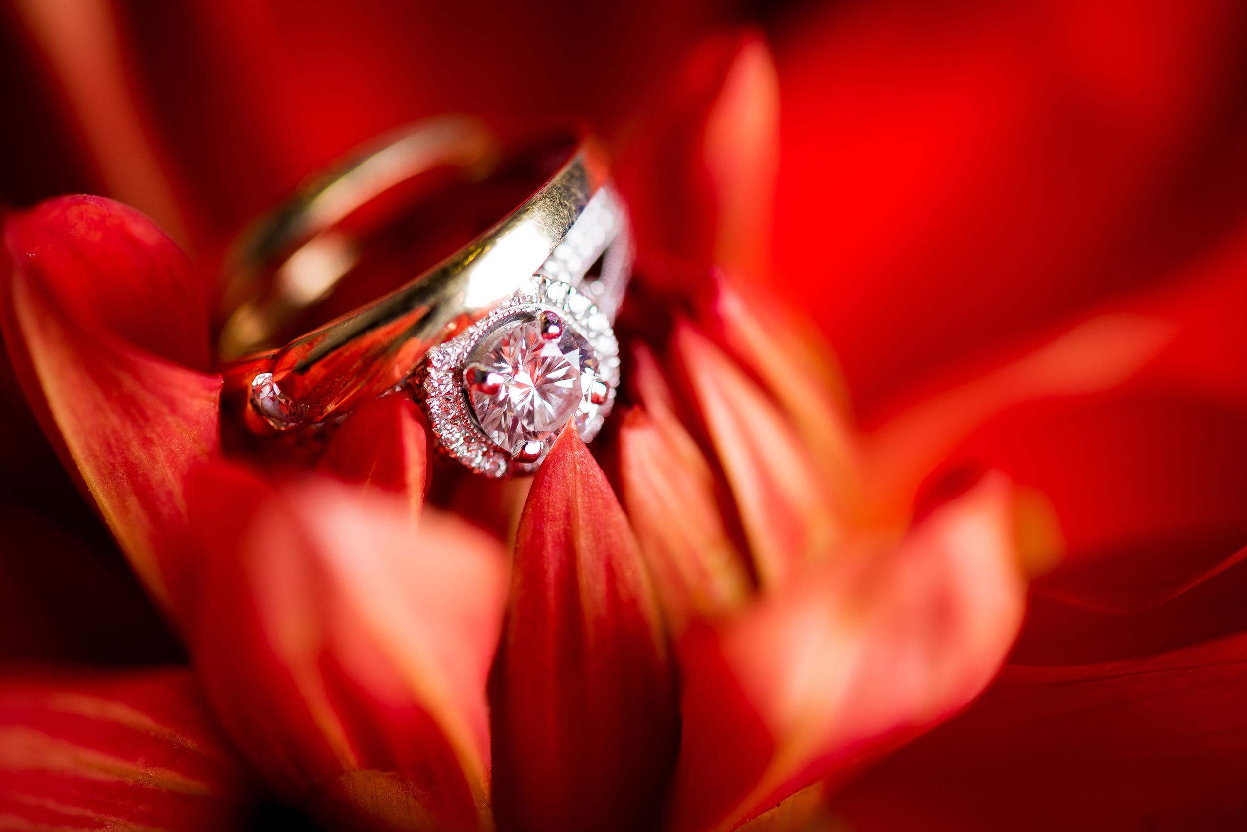 Ring shot-1.jpg