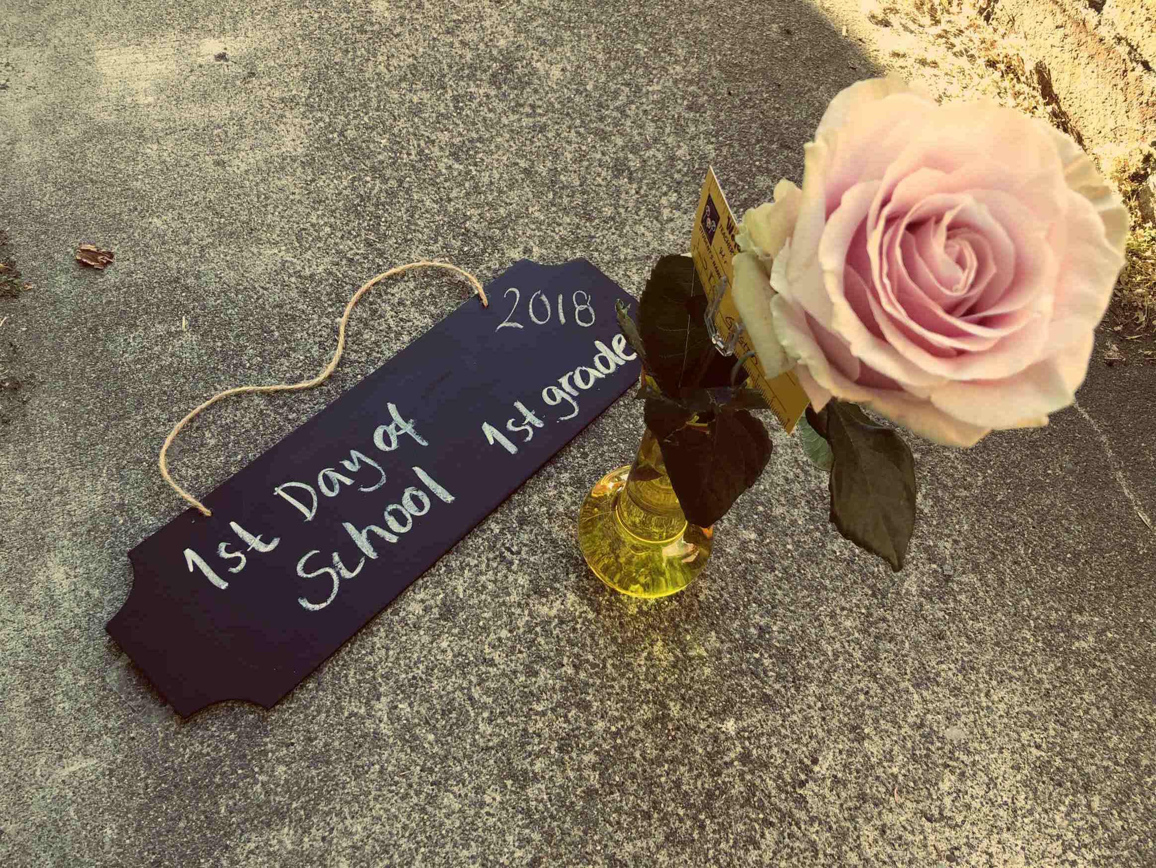 Koulujen alkamista edellisenä päivänä paikallinen kukkakauppa jakoi lapsille ilmaisia ruusuja opettajille vietäviksi.