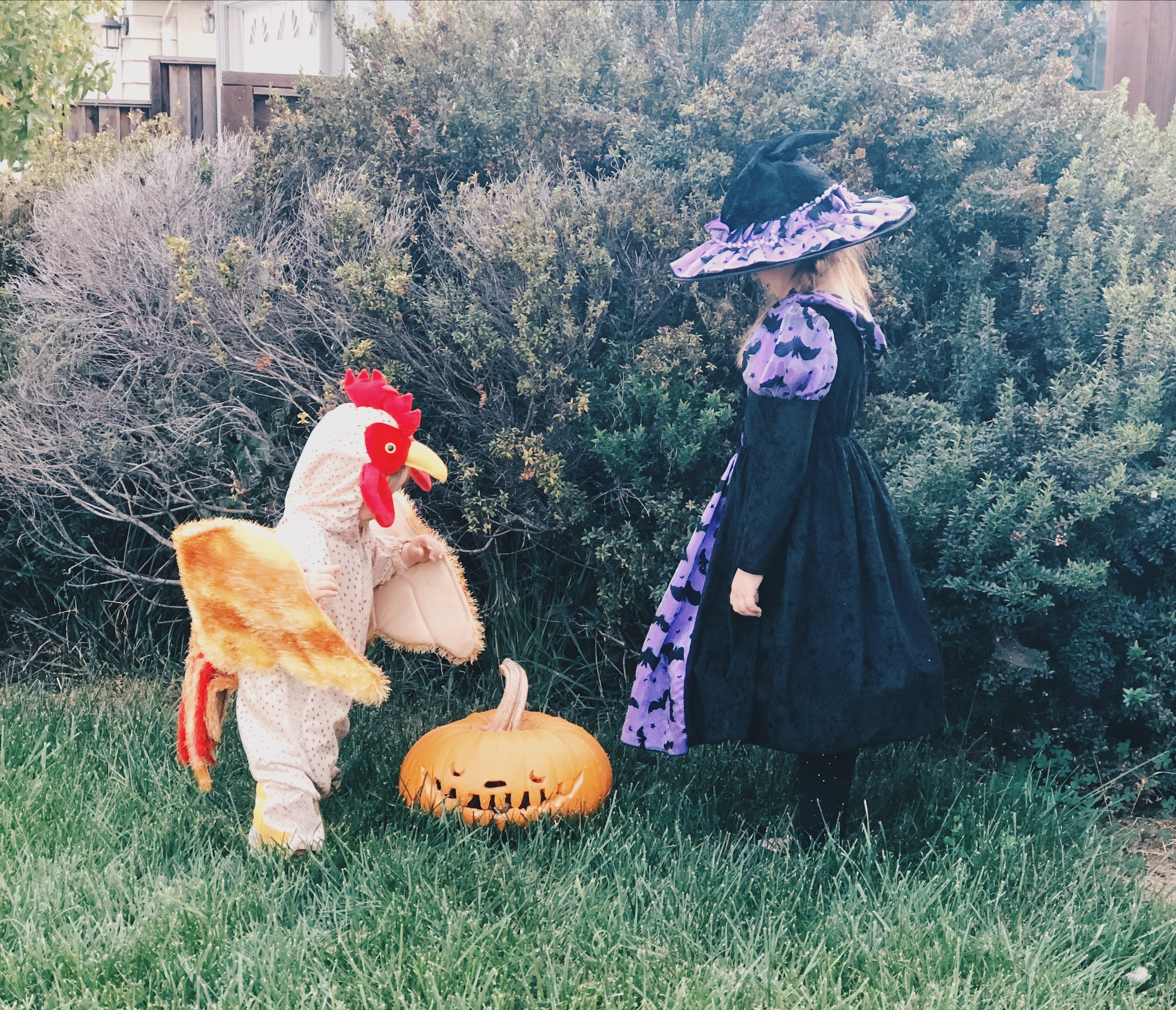 1-vuotiaan kana-asu oli lainassa suomalaiselta ystävältä (kiitos!) ja oli varsinainen hitti. Monet kysyivät mistä moisia pukuja saa tai halusivat jopa ottaa kanasta kuvan. Ihan paras halloweenasu miesmuistiin!