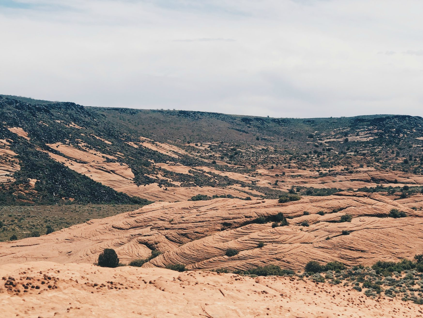 snow_canyon.jpg