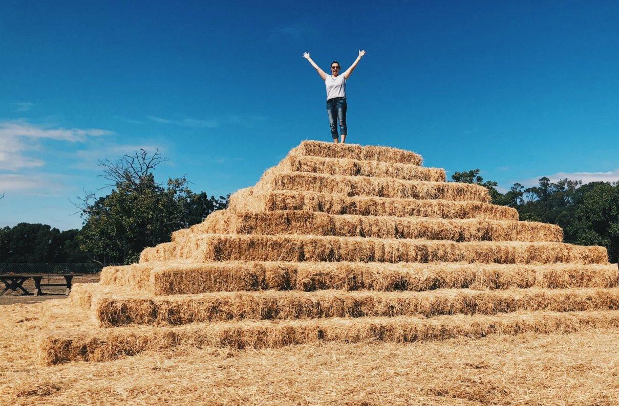 perry_farm_hay_pyramid.jpg