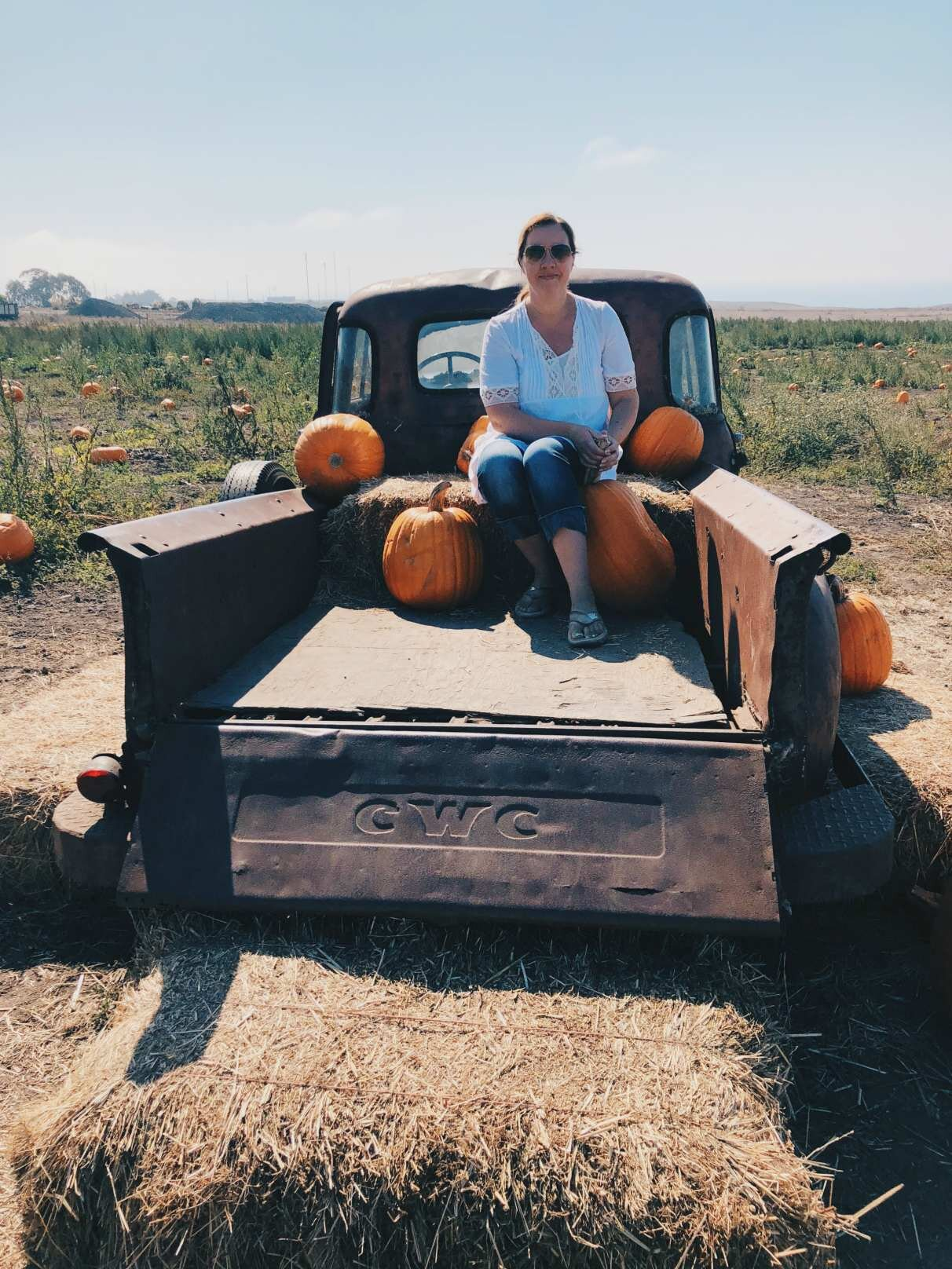 One of the best pumpkin patches in the Bay Area for sure; Bob's Pumpkin Farm