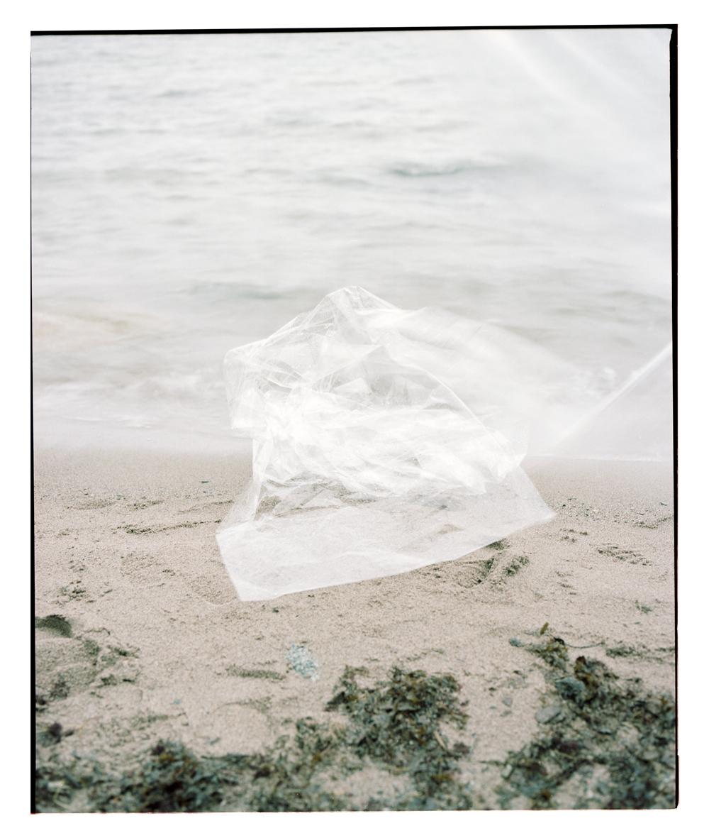 strand-stilleben (11).jpg