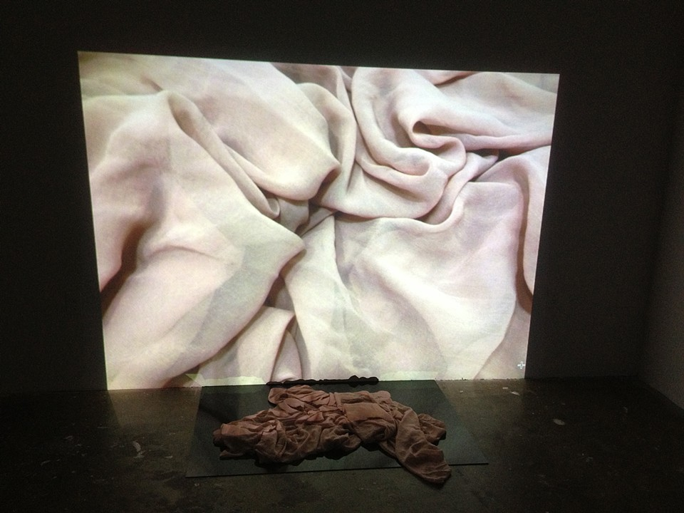 """""""UNTITLED"""", silk, plexiglass and projection,2013"""