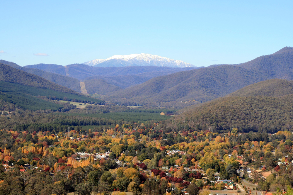 Mount Bogong Overlooking Bright
