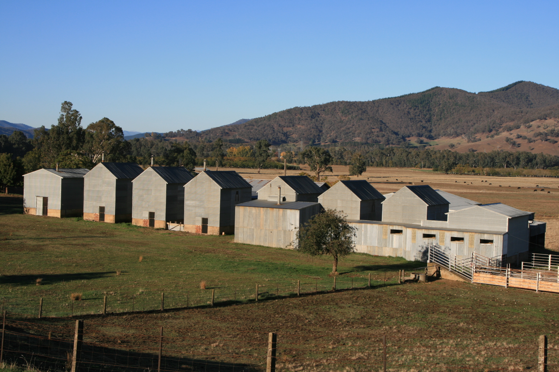 Tobacco Kilns near Myrtleford