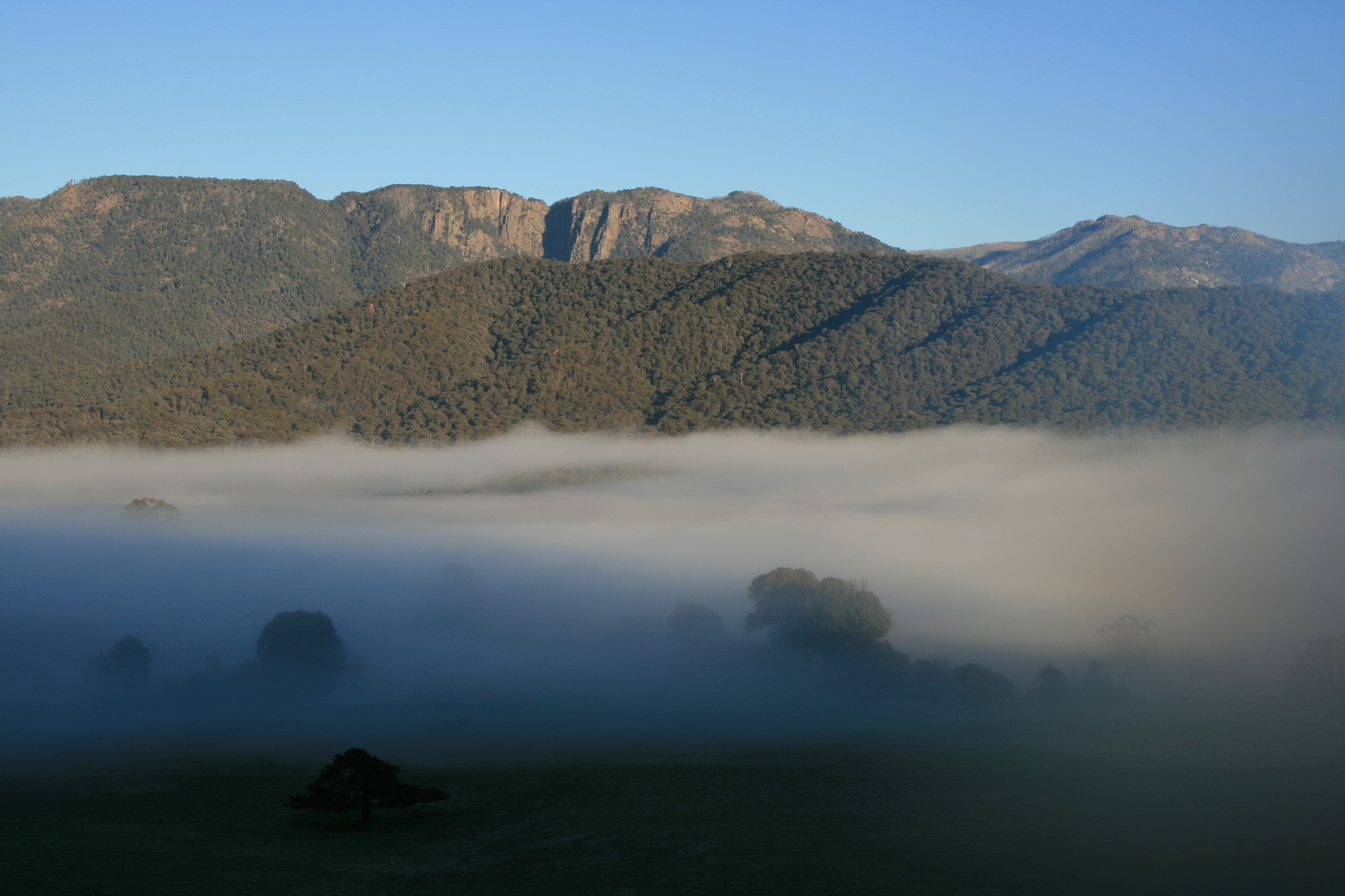Morning Mist, Mount Buffalo