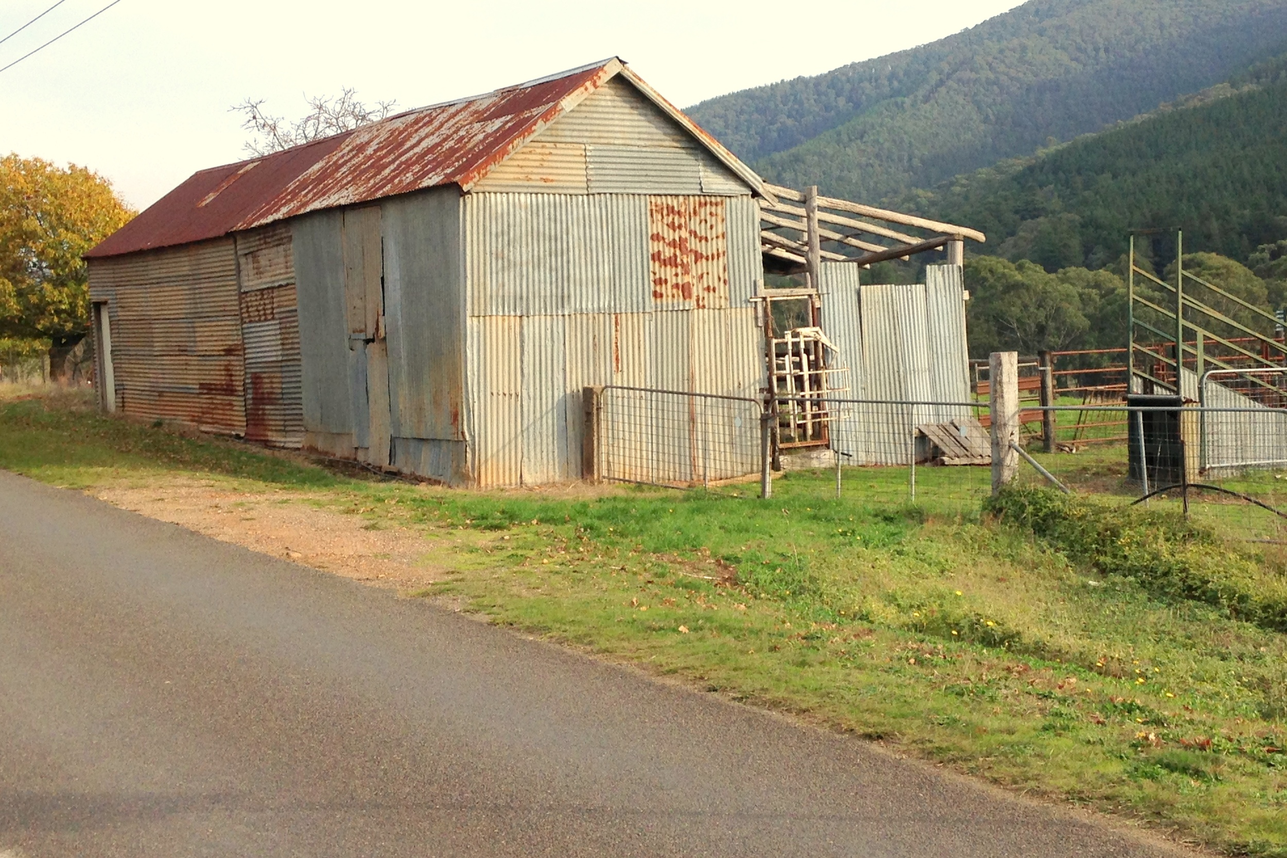 Old Shed, Wandiligong