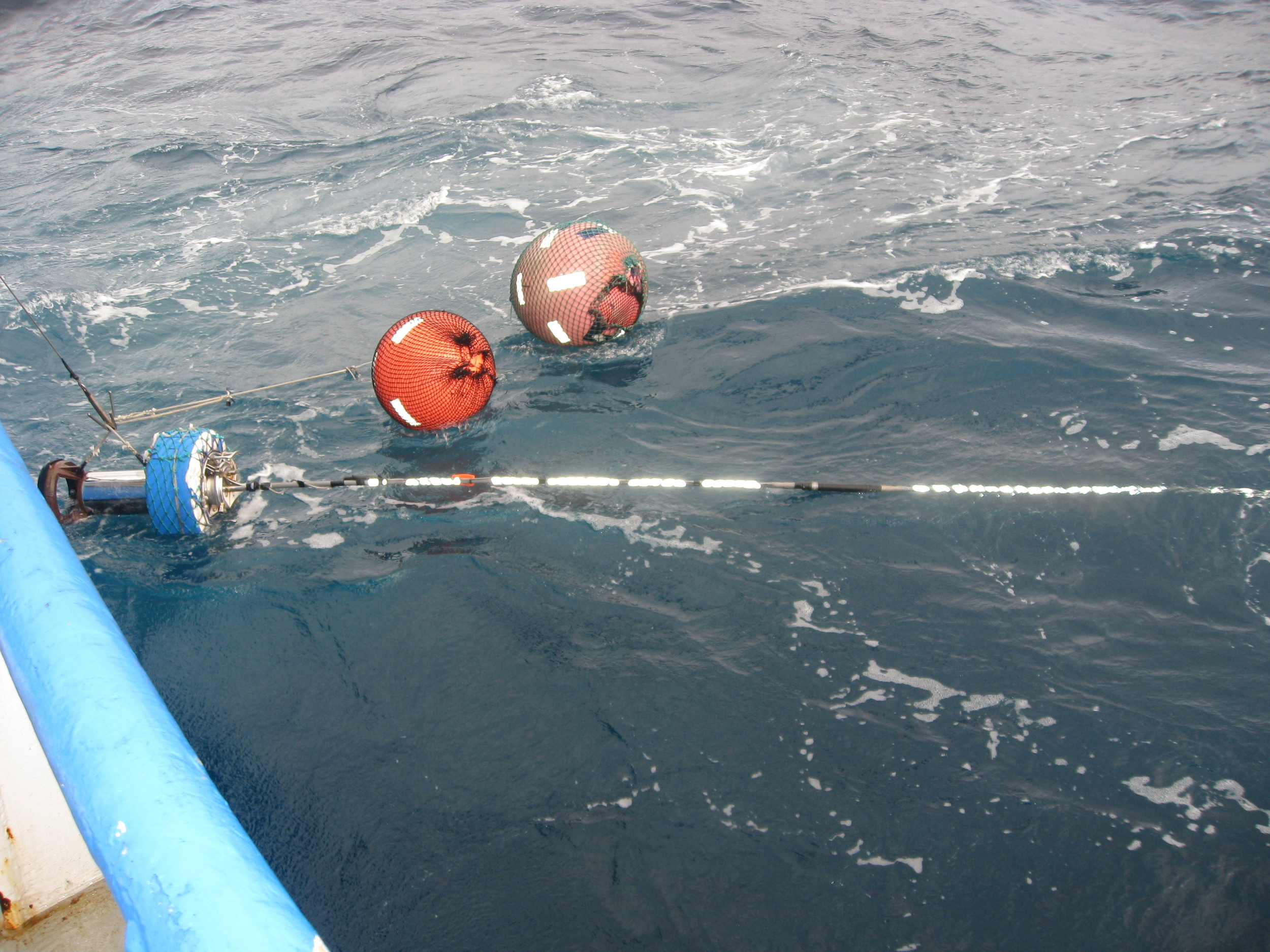 Buoys and radio beepers (used to find the longline gear for haulback)