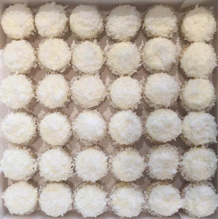Mini Coconut.jpg