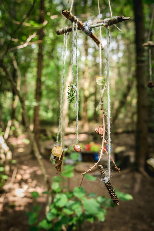 hayley wood-2.jpg