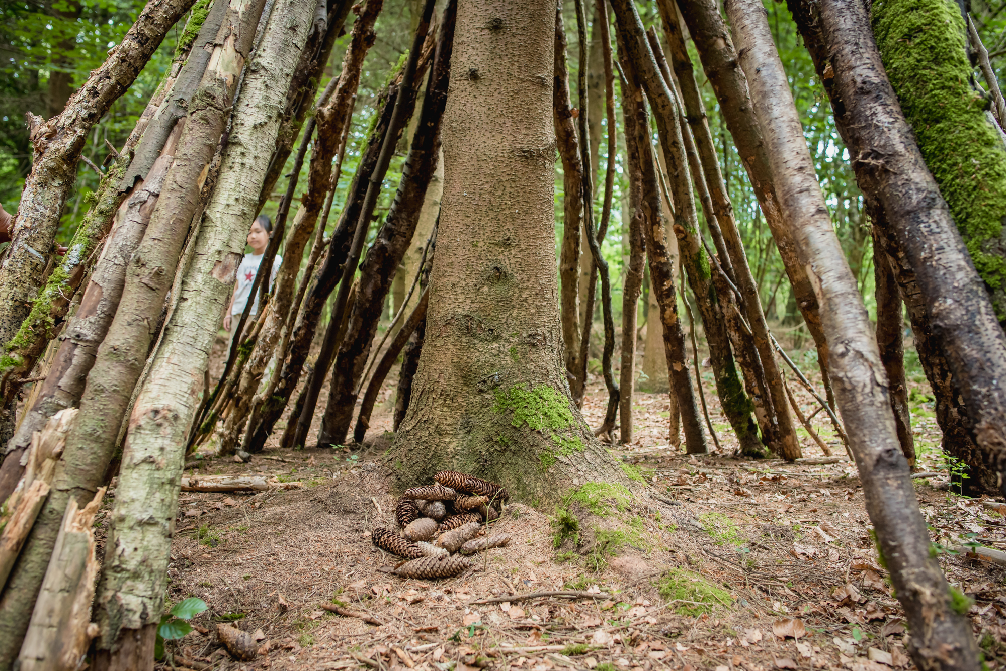 hayley wood-45.jpg