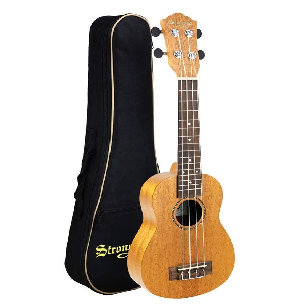 Strong wind ukulele lessons san clemente.jpg