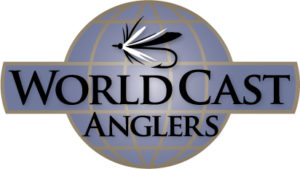 logo-WCA-vf-300x169.jpg