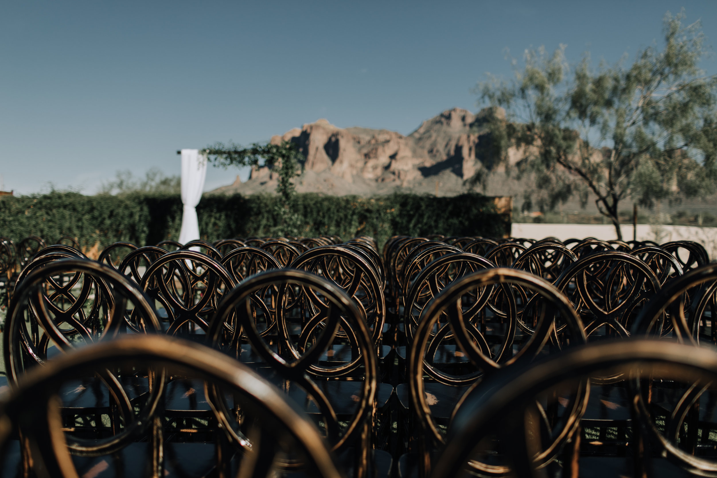 Desert Wedding 10.jpg