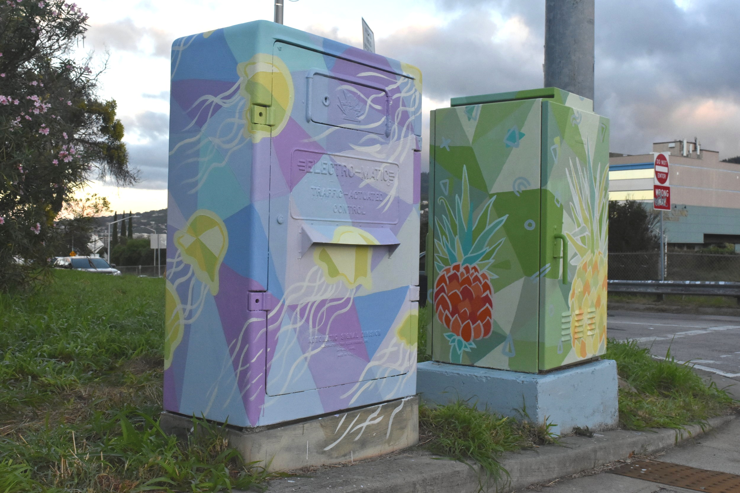 Powerboxes in Kaimuki, Nov 2018