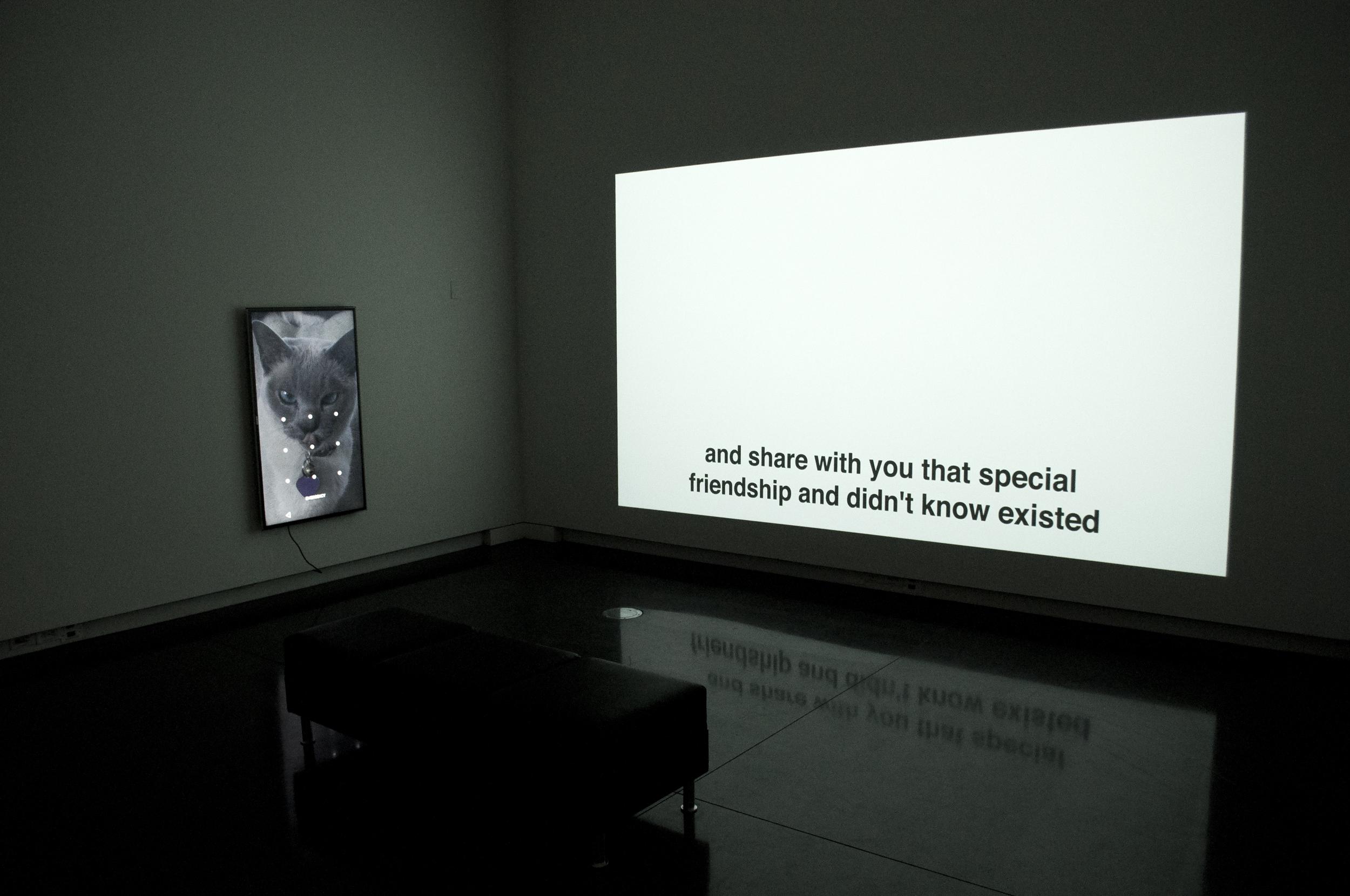 Installation at University of Colorado Boulder Art Museum
