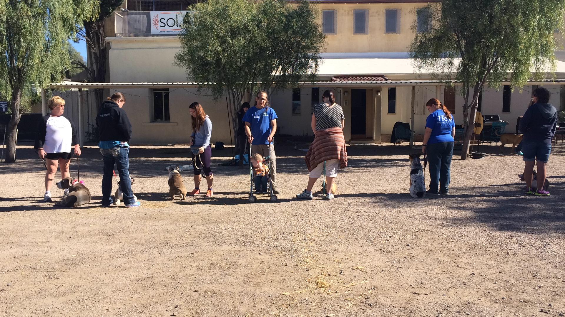 Jeff Gellman training dogs during seminar