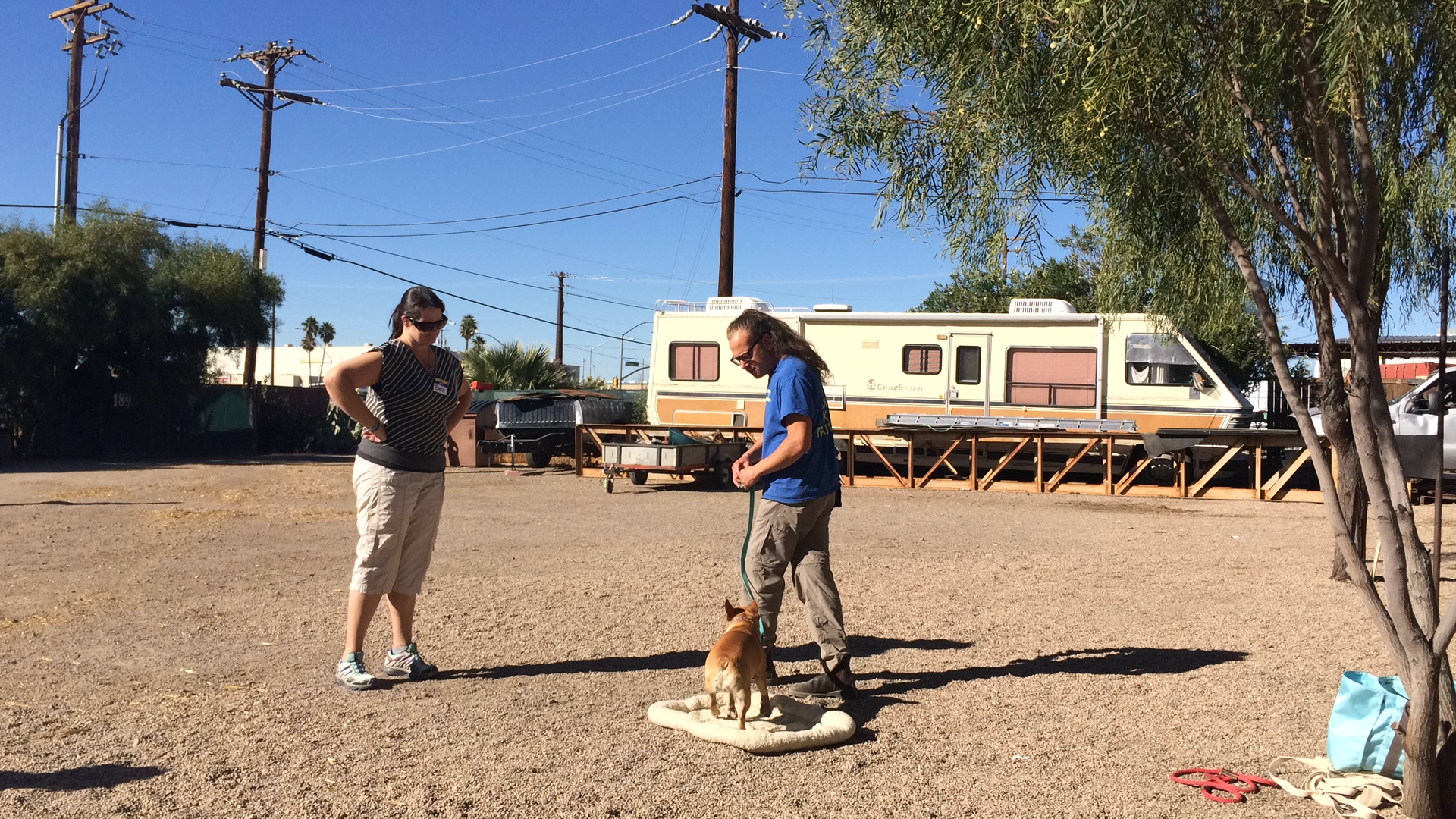 Jeff working with client on dog training