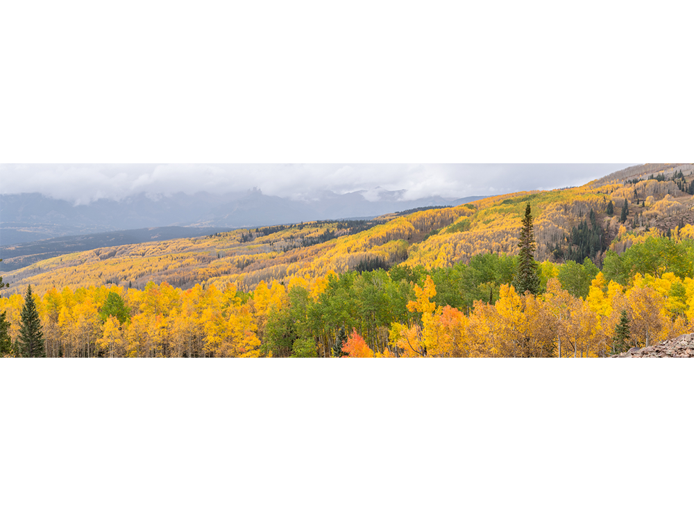 landscape_0002_IMG_9779-HDR-Pano.png